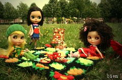 My entry for the Miss Picknick election