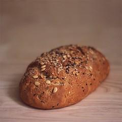 new bread (saicode) Tags: new light bread mixed natural wheat sesame grain seeds watermelon whole homemade poppy brownbread forafriend foodshot homebred