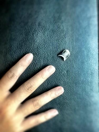 脫落的指甲,找不到回家的路
