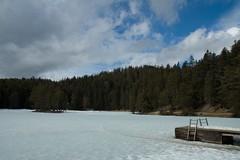 Moesener See