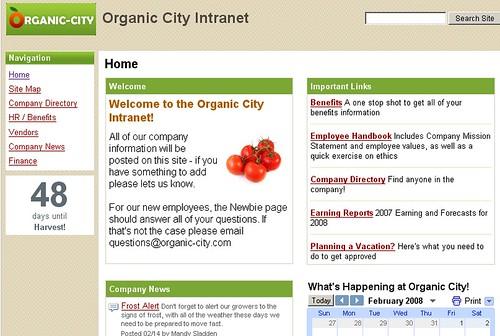 google sites example