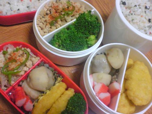 弁当(手作り) │ 食べ物 │ 無料写真素材