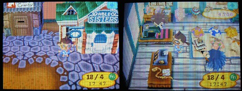 Animal Crossing - 3
