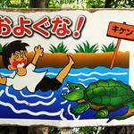 #4229 No swimming in river thumbnail