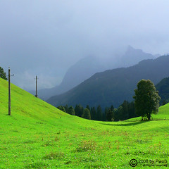Yin and Yang (pwos65) Tags: summer mountains alps green nature landscape lumix austria tirol sterreich sommer natur panasonic berge grn alpen landschaft tyrol fz3 wilderkaiser kaiserwinkl squarish leicalens schwendt kaisergebirge natureselegantshots dcvarioelmaritasph leicasonic