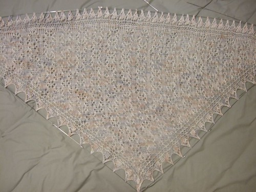 Star of Evening Shawl