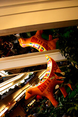 No 55 - Friendship Forever (Karen_O'D) Tags: reflection liverpool friendship flag stjohns shoppingcentre super banana lamb publicart foodcourt antiracism esculator merseyside superlambanana capitalofculture liverpool08 superlambananan