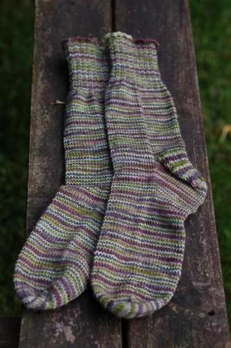 lichen socks