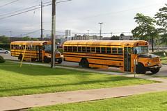 2008-06-24_06-56-49 (djp3000) Tags: bus schoolbus coachcanada stagecoach stagecoachgroup northyork toronto grass pole utilitypole lawn signetdrive
