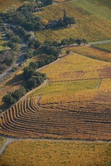 arial 021 (DiverDon) Tags: sonoma winecountry arial