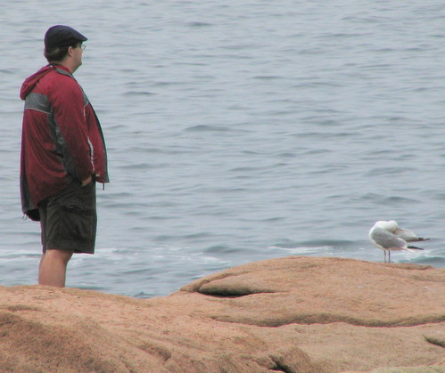 Ian and the Seagull