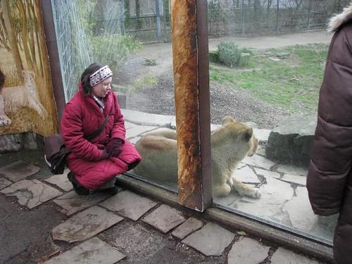 Zoológico alemão 6