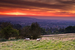 sunset above Broadway (flamed) Tags: uk sunset countryside twilight sheep country farming broadway hills valley dales cotwolds englandcountryside englishcountry