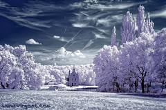 Ice world (- Virgonc -) Tags: bridge blue trees sky white house lake holland ice water field grass forest ir photo nikon flickr d70s most nuvens infrared brige infra hoya r72 intresting dg platinumheartawards virgonc wwwvirgonccom