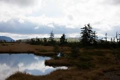 沼ノ原山へ続く緑の丘