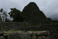 2008 trip to macchu picchu peru 524
