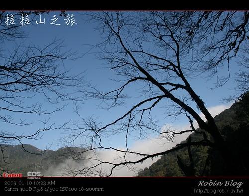 你拍攝的 20090110數位攝影_拉拉山外拍059.jpg。