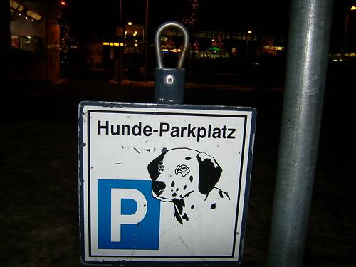Hundeparkplatz