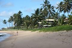 Beach - again! (eurjune2370) Tags: 0812 salvadorbahia