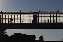 Goodwill Bridge at sunset (Natashatashtash) Tags: ship brisbane naval brisbanemeetup hmasdiamantina