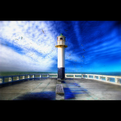 L' Inverno (Dimitri Depaepe) Tags: blue winter sea lighthouse birds clouds pier bravo newport nieuwpoort vivaldi themoulinrouge firstquality artlibre thegreatshooter