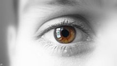 Eye on window (B@rbar@ (Barbara Palmisano)) Tags: boy man macro eye window face finestra occhio riflesso faccia manseye diamondclassphotographer flickrdiamond goldstaraward overtheshot