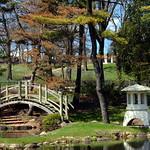 Japanese Garden thumbnail