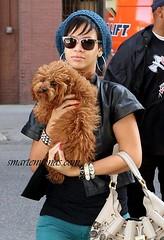 rihanna and a dog