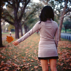 (*Cyrus`*) Tags: park street autumn blur tree 120 6x6 film girl yellow analog rolleiflex mediumformat garden square leaf dof bokeh australia melbourne slide greet reversal 28f backsight fujichromeprovia100frdpiii