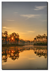 Rising Sun (Fraggle Red) Tags: orange sun mist lake yellow fog sunrise dawn nationalpark florida smoke evergladesnationalpark campground jpeg pinetrees hdr enp canonefs1785mmf456isusm streaksoflight 3exp longpinekey abigfave ourplanet excellentphotographersaward theunforgettablepictures miamidadeco dphdr