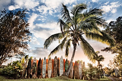 (Eric Rolph) Tags: sunset fence landscape hawaii haiku maui palm surffence surfboardfence