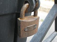 "Rust (rchughtai -- ""not very active"") Tags: macro rust lock lums rchughtai"