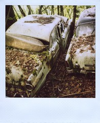8 (Polaroid) (So gesehen.) Tags: wood old nature car polaroid schweiz switzerland automobile decay lofi scanned polaroidlandcamera autofriedhof autograveyard cardump polaroid600film kantonbern polaroid2000 kaufdorf sx70moddedfor600 historischerautofriedhof fehicle