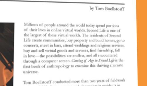 Tom Boellstorff
