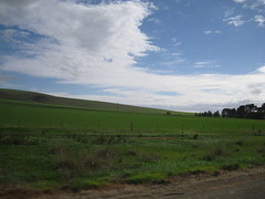 South Australia ountryside