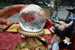 Fortune-Telling (WhereTheWildThingIs) Tags: fortuneteller wildthing crystalball semiuseful