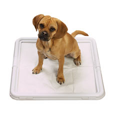 Puppy Pad Holder Dog Toilet Review