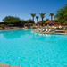 Poolside at Westin Kierland Resort
