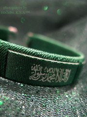 National Day of Saudi Arabia (AMAL MOHAMMED..) Tags: green day kingdom national saudi arabia  celebrates