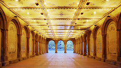 Bethesda Terrace Lower passage (Tony Shi Photos) Tags: centralpark hdr bethesdaterrace  nikond700    thnhphnewyork  tonyshi   lowerpassage