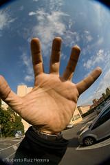 in my hand (Berts @idar) Tags: calle zaragoza callejeando espaa peleng8mmfisheye canoneos400ddigital
