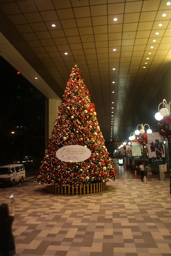 [S'pore Training] Christmas Tree