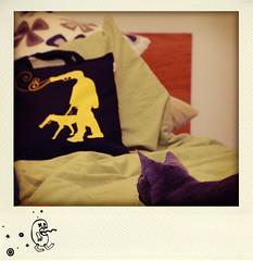 polaroid_like_a_dog_3
