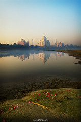 Taj Mahal, Agra, India (Jitendra Singh : Indian Travel Photographer) Tags: morning travel blue sky india reflection green monument water memorial scenery colours wide taj tajmahal agra bluesky cpc marvel mughal uttarpradesh jiten travelphotography jitendra yamuna mumtaj jitender travelphotographer anawesome jitendrasingh indiaphoto jitens bestphotojournalist theperfectphotographer indiantravel iloveyouindia sahajahan wwwjitenscom gettyphotographer bestindianphotographers jitensmailgmailcom wwwindiantravelphotographercom famousindianphotographer famousindianphotojournalist gettyindianphotographer