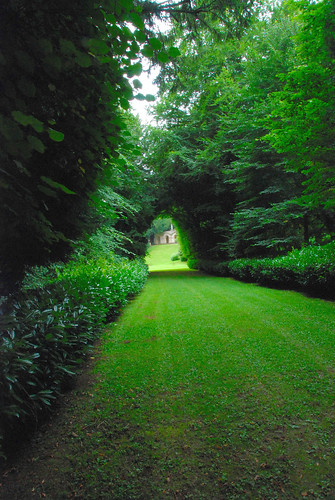 Further Down the Avenue at Rousham Park