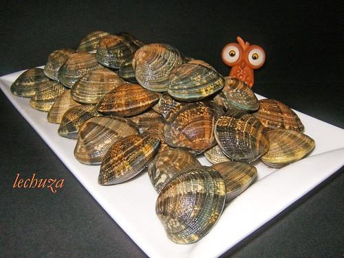 Almejas marinera-crudas fuente