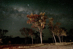 Back under the Australian starry nights (PacoAlcantara) Tags: road trip sky stars highway long exposure australia explore southern exposition nebula astrophotography nsw qld queensland newsouthwales astronomy   constellation hemisphere milkyway armidale  canonefs1022mmf3545usm      glenninnes Astrometrydotnet:status=failed  Astrometrydotnet:id=alpha20090258860667