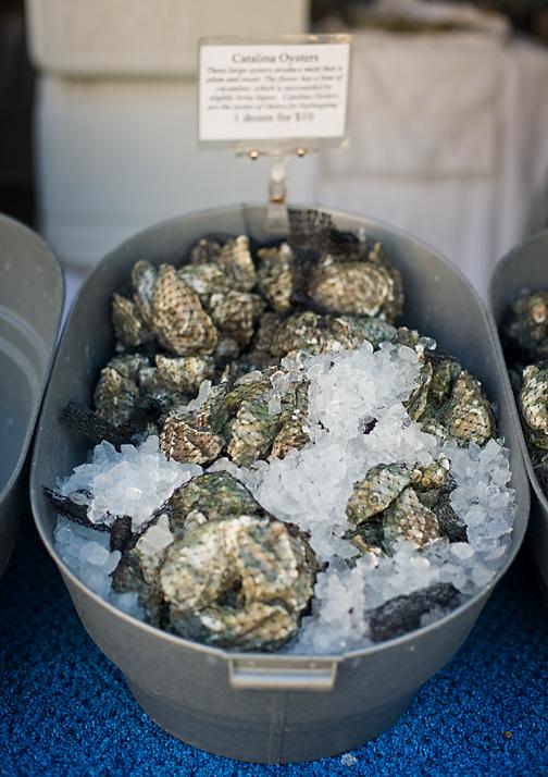 Carlsbad Aquafarm Catalina Oysters
