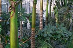 Untitled (bgphotography) Tags: botanicalgarden florafauna