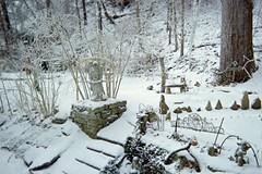 Walkway from back porch...stairs to patio (junebug_1944) Tags: icestorm eurekaspringsar january2009